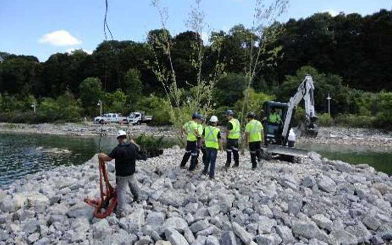 five construction workers stand on pile of rocks with small bulldozer near body of water
